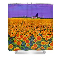 Sunflower Field Shower Curtain by Anne Marie Brown