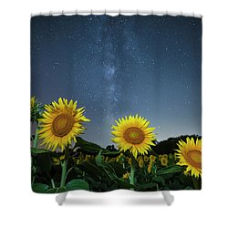 Sunflower Galaxy V Shower Curtain