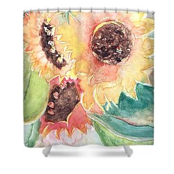 Sunflower Glory Shower Curtain by Renate Nadi Wesley