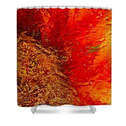 Shower Curtain featuring the photograph Sunflower Impressions by Jeanette French