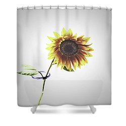 Sunflower In A Clear Vase Shower Curtain