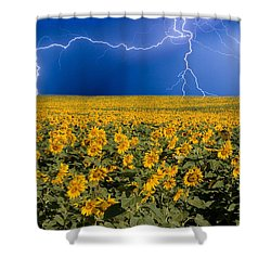 Sunflower Lightning Field  Shower Curtain