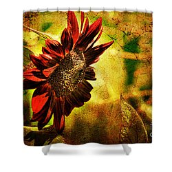 Sunflower Shower Curtain by Lois Bryan