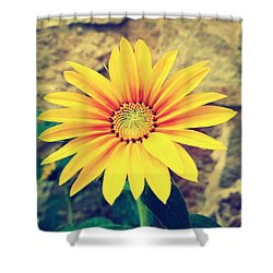Shower Curtain featuring the photograph Sunflower by Lucia Sirna