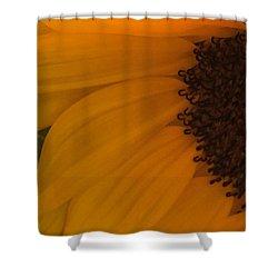 Sunflower Macro Shower Curtain by Nance Larson