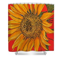 Da153 Sunflower On Red By Daniel Adams Shower Curtain