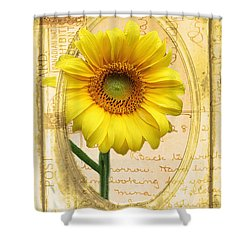 Sunflower On Vintage Postcard Shower Curtain by Nina Silver