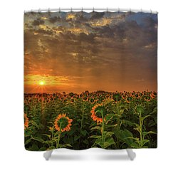 Sunflower Peak Shower Curtain