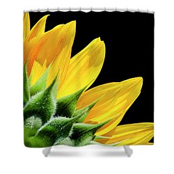 Shower Curtain featuring the photograph Sunflower Petals by Christina Rollo