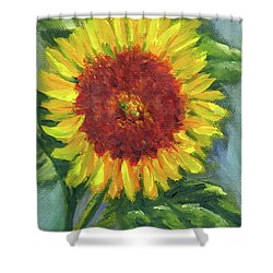 Sunflower Seed Packet Shower Curtain