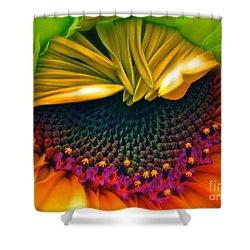 Sunflower Smoothie Shower Curtain