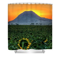 Sunflower Sunrise Shower Curtain
