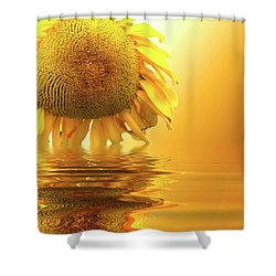 Sunflower Sunset Shower Curtain by David French