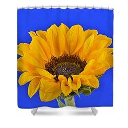 Sunflower Sunshine 406-6 Shower Curtain