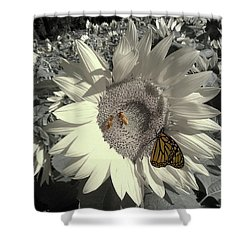 Sunflower Tint Shower Curtain
