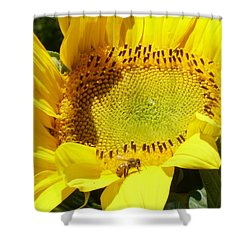 Sunflower With Honeybee Shower Curtain