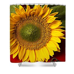 Sunflower With Old Key Shower Curtain by Garry Gay