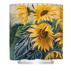 Sunflowers 1 Shower Curtain by Jana Goode