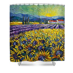 Sunflowers And Lavender Field - The Colors Of Provence Shower Curtain