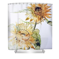 Sunflowers II Uncropped Shower Curtain