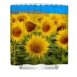 Sunflowers In The Field Shower Curtain