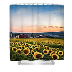 Shower Curtain featuring the photograph Sunflowers, Moon And Stars by Eduard Moldoveanu