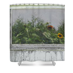 Sunflowers On Barn Shower Curtain by Tina M Wenger