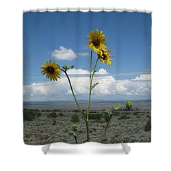 Sunflowers On The Gorge Shower Curtain