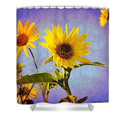 Shower Curtain featuring the photograph Sunflowers - The Arrival by Glenn McCarthy Art and Photography