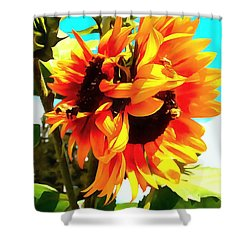 Shower Curtain featuring the photograph Sunflowers - Twice As Nice by Janine Riley