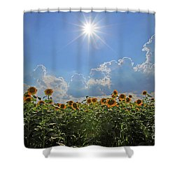 Sunflowers With Sun And Clouds 1 Shower Curtain