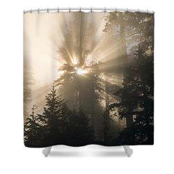 Sunlight And Fog Shower Curtain
