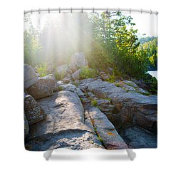 Shower Curtain featuring the photograph Sunlight On Cove Point by Alex Blondeau