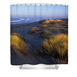 Sunlight On The Beach Grass Shower Curtain