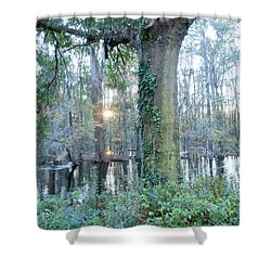 Sunlight On The Edisto River Shower Curtain