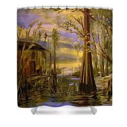 Sunlight On The Swamp Shower Curtain