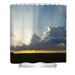 Sunlights Shower Curtain by Milton Uemura