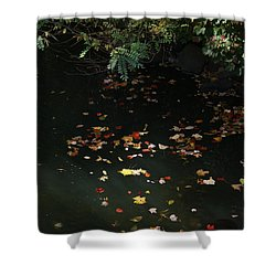 Sunlit Autumn Leaves On The Mill River Shower Curtain