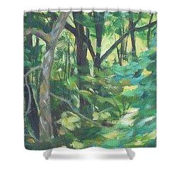 Sunlit Backyard Shower Curtain