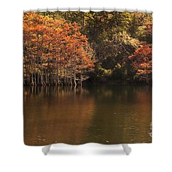 Shower Curtain featuring the photograph Sunlit Cypress Trees On Beaver's Bend by Tamyra Ayles