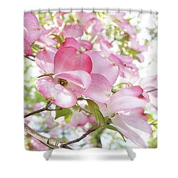 Sunlit Dogwood Blooms Shower Curtain