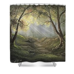 Sunlit Forrest  Shower Curtain