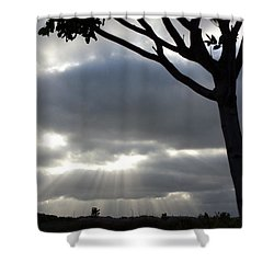 Sunlit Gray Clouds At Otay Ranch Shower Curtain