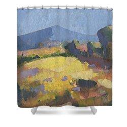 Sunlit Shower Curtain
