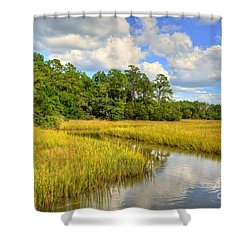 Sunlit Marsh Shower Curtain by Kathy Baccari