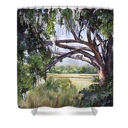 Sunlit Marsh Shower Curtain by Mary McCullah