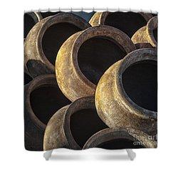 Sunlit Pottery Shower Curtain by Sandra Bronstein