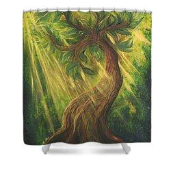 Sunlit Tree Shower Curtain