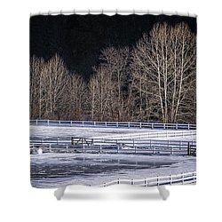 Sunlit Trees Shower Curtain by Tom Singleton