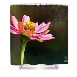 Sunlit Uplifting Beauty Shower Curtain by Sue Melvin